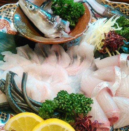 海鮮・魚料理専門店「魚小屋よしき」の料理イメージ「刺し身」